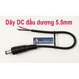 Dây DC đầu dương 5.5 mm
